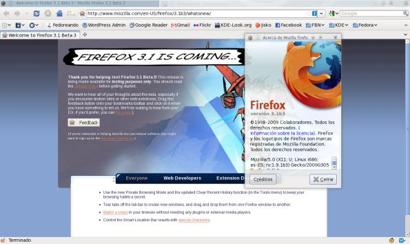 Firefox 3.1 Beta 3.