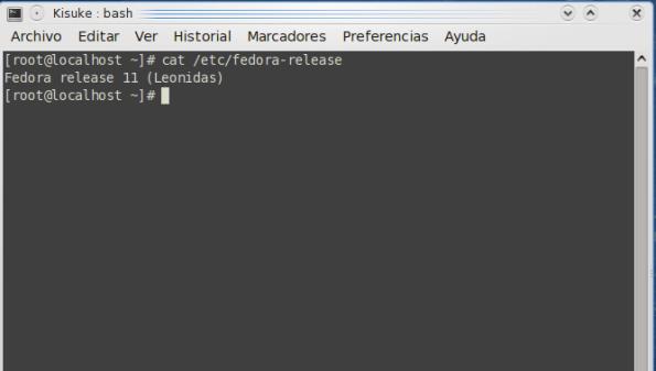 Fedora 11 Leonidas Release.